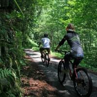 木崎湖 サイクリング レンタサイクル